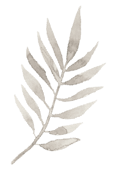 Fern Watercolor Graphic for Wedding Website